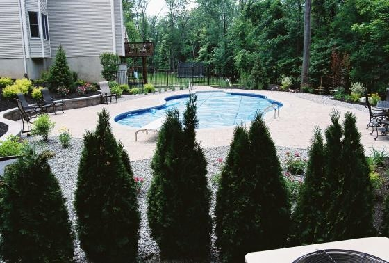 Liner Pool with New Landscaping