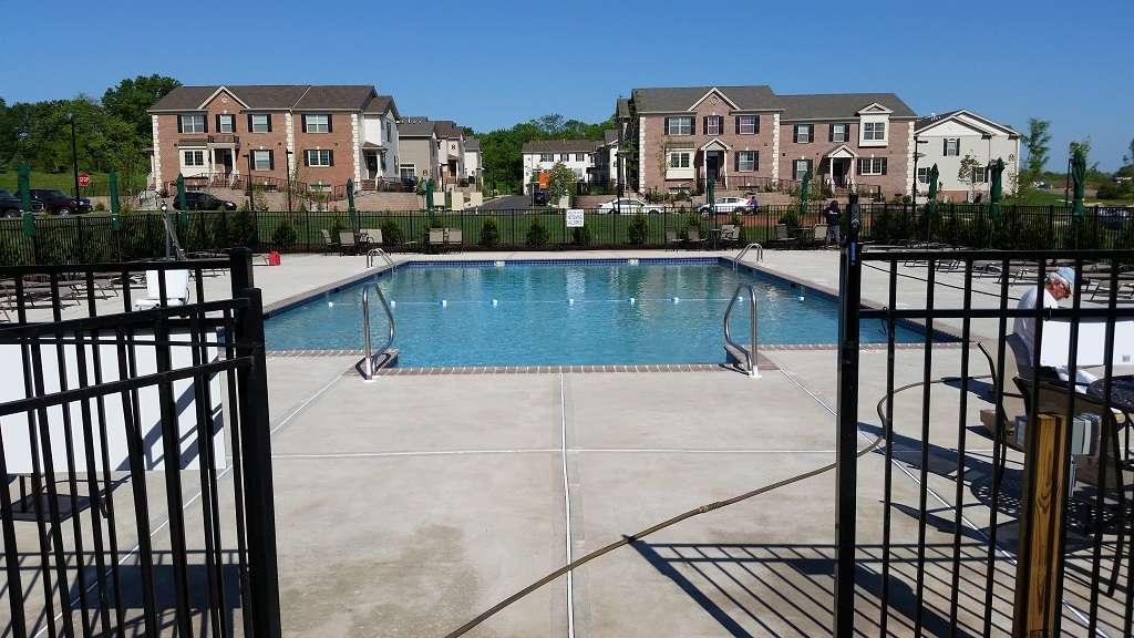 beautiful-concrete-pool-backyard-dream